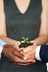 Helping business flourish together