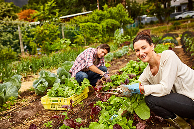 Buy stock photo Portrait of a couple working in their organic garden