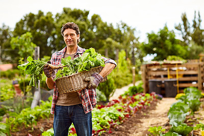 Buy stock photo Portrait of a smiling man holding a basket of turnips while standing in his organic garden
