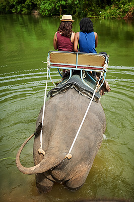 Buy stock photo Rear view shot of two young tourists on an elephant ride through a tropical rainforest