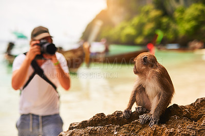 Buy stock photo Shot of a young tourist taking a picture of a monkey while exploring a tropical beach