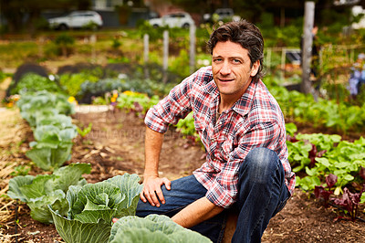 Buy stock photo Portrait of a man examining a cabbage while kneeling in his organic garden