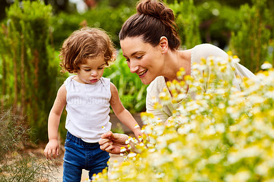 Buy stock photo Shot of a mother and little daughter looking at plants in an organic garden