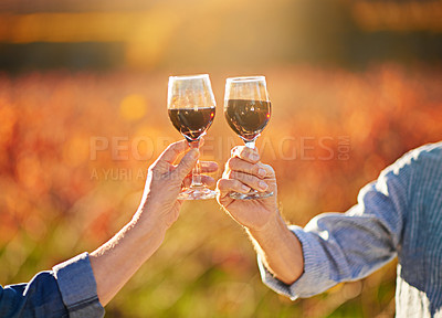 Buy stock photo Shot of an unidentifiable senior couple drinking wine together while standing in a vineyard