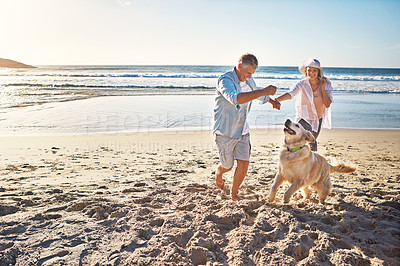 Buy stock photo Shot of a mature couple spending the day at the beach with their dog