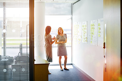 Buy stock photo Shot of two professional businesswoman meeting in the office