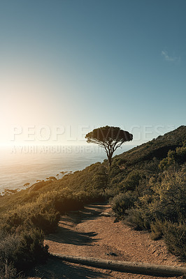 Buy stock photo Shot of a beautiful view along the coast from the top of a mountain