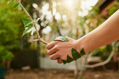 Buy stock photo Cropped shot of an unidentifiable young man shaking hands with a branch in his garden