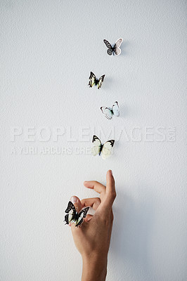 Buy stock photo Studio shot of a unrecognizable persons hand releasing butterflies into the air on a grey background