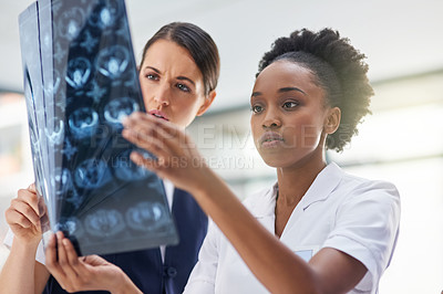 Buy stock photo Cropped shot of doctors in the hospital