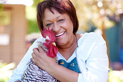 Buy stock photo Shot of a happy mature woman hugging her pet chicken in her backyard at home