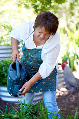 Buy stock photo Shot of a mature woman watering plants in her backyard