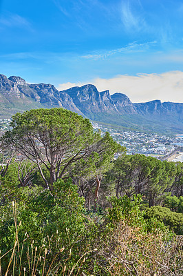 Buy stock photo The twelve apostles and forest - Cape Town, Western Cape