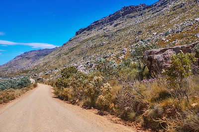 Buy stock photo The Cederberg Wilderness Area, managed by Cape Nature Conservation, is a wonderfully rugged mountain range about 200km north of Cape Town. Largely unspoiled, this designated wilderness area is characterised by high altitude fynbos and, not surprisingly, considering the name, sizeable cedar trees.