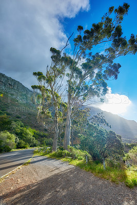 Buy stock photo Mountain trail - Table Mountain National Park