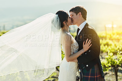 Buy stock photo Shot of a cheerful bride and groom sharing a kiss together outside next to vineyards during the day