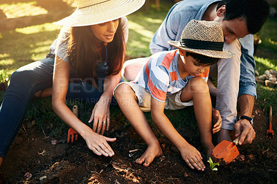 Buy stock photo Shot of a family gardening together in their backyard