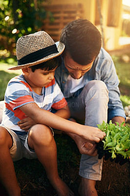 Buy stock photo Shot of a father gardening with his little son in their backyard