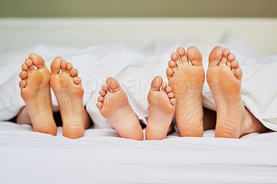 Buy stock photo Shot of a unrecognizable family's feet positioned next to each other in bed while they're sleeping at home in the morning