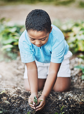 Buy stock photo Shot of a little boy gardening outdoors