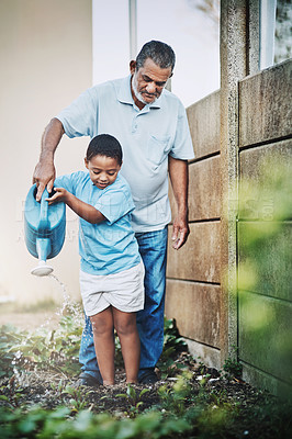 Buy stock photo Shot of a little boy and his grandfather using watering the garden together outdoors