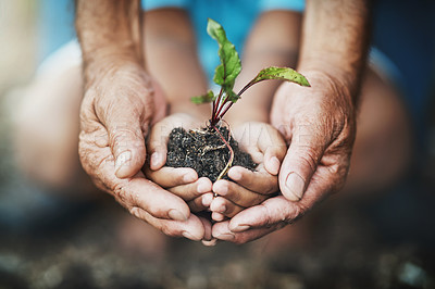 Buy stock photo Closeup shot of an adult and child holding a plant growing out of soil