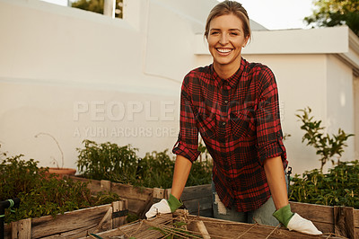 Buy stock photo Cropped portrait of an attractive young woman busy with her plants in the garden