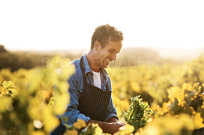 Buy stock photo Cropped shot of a young man working on a farm