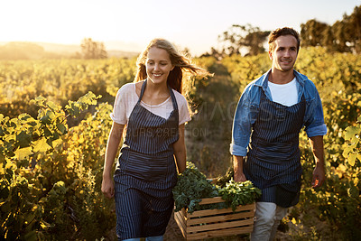 Buy stock photo Shot of a young man and woman working on a farm
