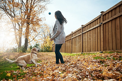 Buy stock photo Shot of an attractive young woman playing fetch with her dog on an autumn day in a garden