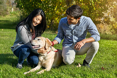 Buy stock photo Shot of a loving young couple taking their dog for a walk through the park