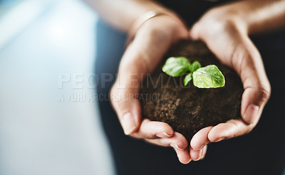 Buy stock photo Closeup shot of an unrecognizable businesswoman holding a plant growing out of soil