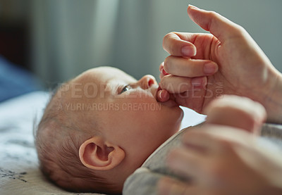 Buy stock photo Shot of an adorable baby boy sucking on his mother's finger