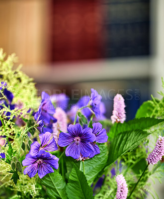 Buy stock photo Bouquet with different kind of flowers in our library