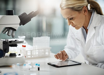 Buy stock photo Cropped shot of an attractive mature female scientist using a tablet while doing research in her lab