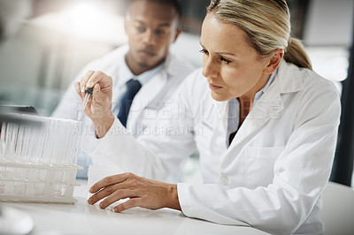 Buy stock photo Cropped shot of two scientists testing a sample while doing research in their lab