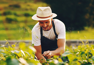 Buy stock photo Shot of a handsome young man working in a garden