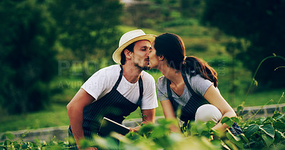 Buy stock photo Shot of an affectionate young couple working in a garden together