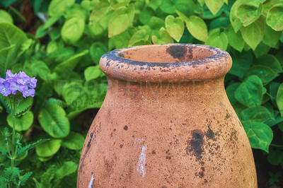 Buy stock photo In my garden - jar and flower pot