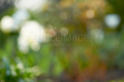 Buy stock photo Use full as background - copy space
