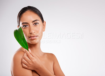 Buy stock photo Studio portrait of a beautiful young woman holding a eucalyptus leaf against a gray background
