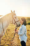 The special bond between a horse and it's owner