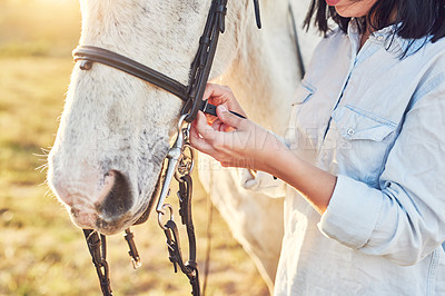 Buy stock photo Shot of a young woman preparing to ride her horse on a farm