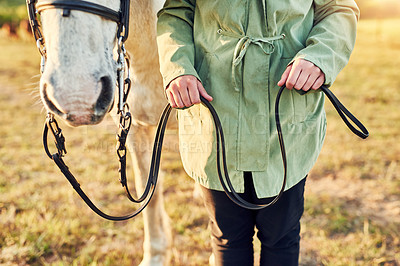 Buy stock photo Cropped shot of a woman preparing to ride her horse on a farm