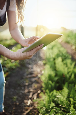 Buy stock photo Cropped shot of an unrecognizable young woman working on her self owned farm