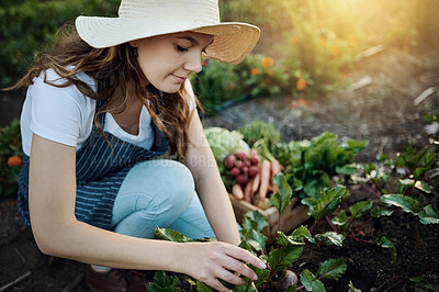 Buy stock photo Full length shot of an attractive young woman working on her self owned farm