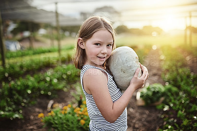 Buy stock photo Cropped shot of an adorable little girl helping out on her family's farm