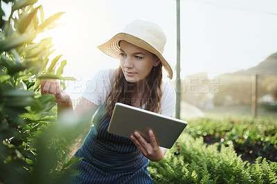 Buy stock photo Shot of people on a farm