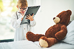 Giving Teddy a clean bill of health