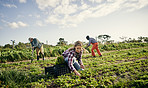 The organic farming business is booming
